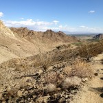 View looking east from the Lake to Cove Trail in La Quinta