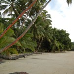 The east end of the beach near Papageno Resort, near the trailhead leading to Naivakarauniniu.