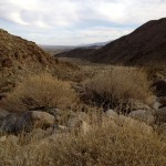 Looking out at the mouth of the canyon on the Borrego Palm Canyon Trail.