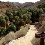 Start of the Palm Canyon Trail in Indian Canyons near Palm Springs.