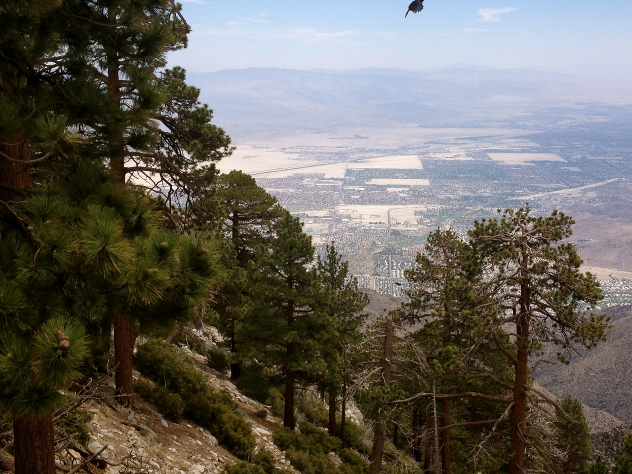Desert View Trail – Mount San Jacinto State Park, California