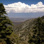Thunder Mountain Trail on Mt. Baldy