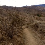 Chuckwalla Trail, Rancho Mirage, California