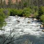 Rapids on the Kern River