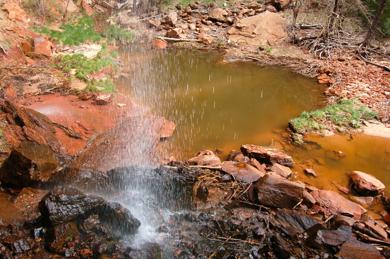 Emerald Pools and Kayenta trails – Zion National Park, Utah