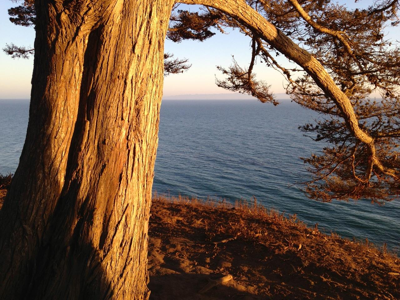 Douglas Family Preserve – Santa Barbara, California