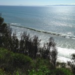 View of the Pacific Ocean from More Mesa