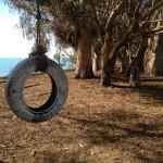 Tire swing at More Mesa