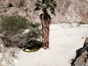 Magnesia Falls Canyon
