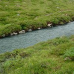 Savage River Loop Trail in Denali National Park, Alaska