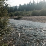 Chena River on the Angel Rocks Trail east of Fairbanks, Alaska