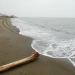 Arctic Ocean beach in Barrow, Alaska