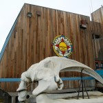 A whale bone skull sits out front of City Hall in Barrow, Alaska