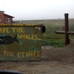 Many of the dumpsters scattered around town had murals painted on them - Barrow, Alaska
