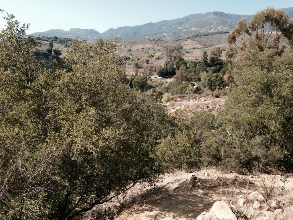 San Antonio Creek Trail in Tuckers Grove Park in Santa Barbara, California