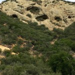 Hiking to the wind caves at Gaviota State Park