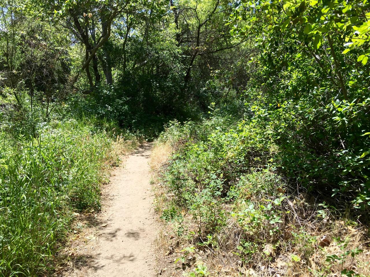 Santa Ynez Waterfall Trail – Topanga State Park, California