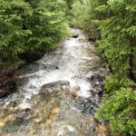 Spruce Creek along the Lower Mohawk Lake Trail near Breckenridge