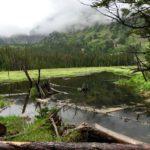 Lower Mohawk Lake Trail near Breckenridge