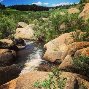 Lake Gulch and Inner Canyon trails at Castlewood Canyon State Park near Franktown, Colorado - Instagram