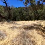 Red Rocks Trail north of Santa Barbara, California