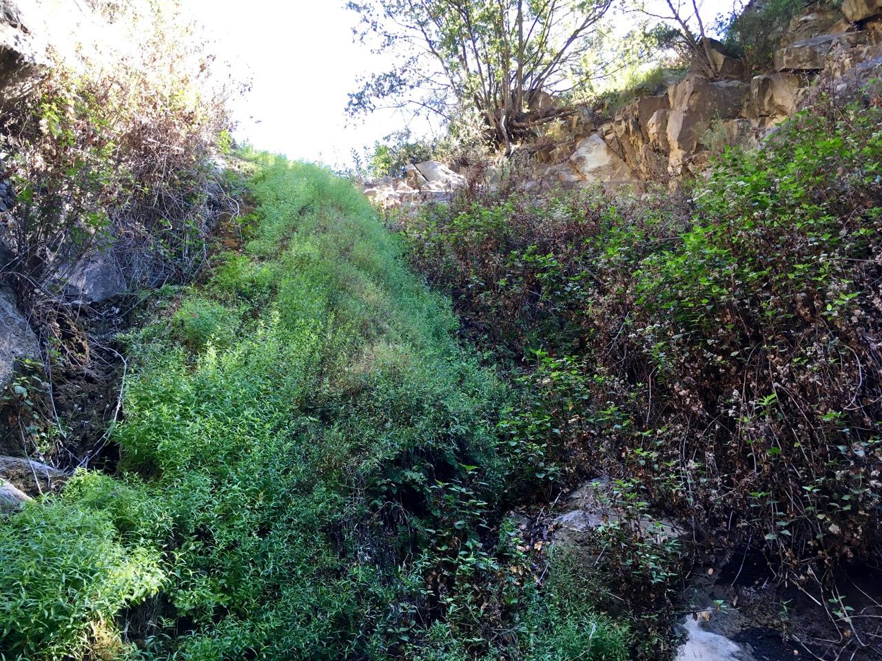 View of the waterfall at the end of San Ysidro Trail near Santa Barbara, California