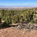 Dale Ball Trails North near Santa Fe, New Mexico