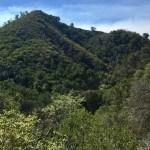 Rattlesnake Canyon Trail near Santa Barbara, California