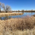 Lake Ladora at Rocky Mountain Arsenal National Wildlife Refuge