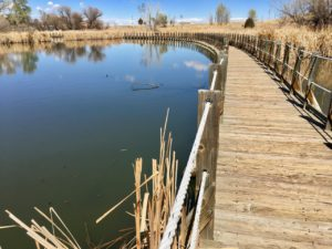 Lake Mary at Rocky Mountain Arsenal National Wildlife Refuge