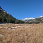 Cub Lake Trail in Rocky Mountain National Park