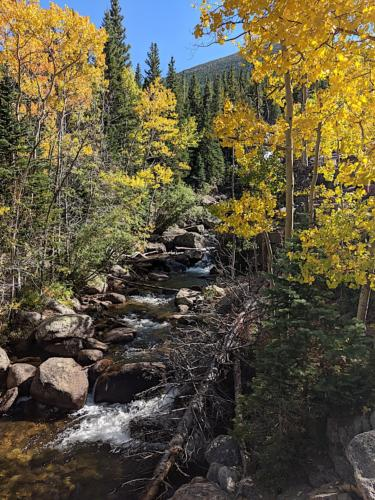 Alberta Falls Trail in Rocky Mountain National Park.